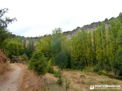 Hoces Río Duratón - Villa Sepúlveda; rutas de montaña por madrid; iniciacion senderismo
